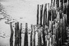 Wood piles at low tide on the beach of Saint Malo, France Stock Image