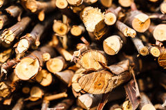 Wood piles stacked Royalty Free Stock Photo