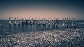 Wood pilings med svartvita bakgrunder för havsikter Arkivbilder