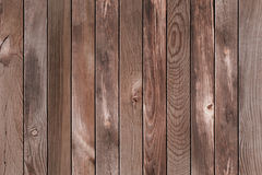 Wood pine background Stock Photos
