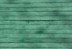 Wood pine plank green texture for background Stock Photography