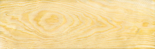 Wood pine texture Royalty Free Stock Photography