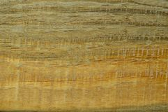Wood pine texture. Grain, cover. Wood grain texture. Pine wood, can be used as background stock images