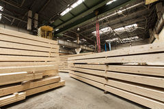 Wood pine timber for construction buildings Stock Images