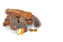 Wood, pineapple cones and matches Royalty Free Stock Image
