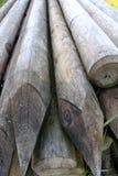 Wood pinnekors Arkivbild