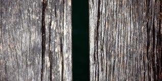 Wood pir, abstrakt textur av en naturlig grå färg Arkivfoto