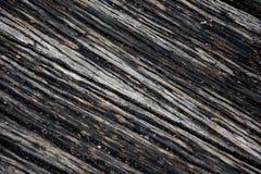 Wood pir, abstrakt textur av en naturlig grå färg Fotografering för Bildbyråer