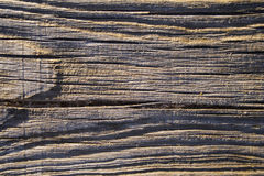 Wood plank. The texture detail of a wood plank Stock Photography