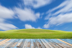 Wood plank on beautiful green field and blue sky background ,sce. Nery for background and product royalty free stock images