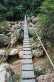 Wood plank bridge Royalty Free Stock Image