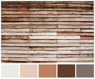 Wood plank brown texture background with colored palette guide Royalty Free Stock Image