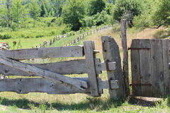Wood plank gate. Primitive wood plank gate against a lush green backdrop Stock Images