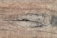 Wood plank with gnarl Royalty Free Stock Photo