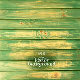 Wood plank green background. Rustic wood plank texture vintage background Royalty Free Stock Image