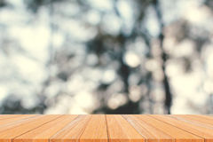 Wood plank and green forest Stock Images