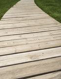 Wood plank and green grass texture background Stock Photography