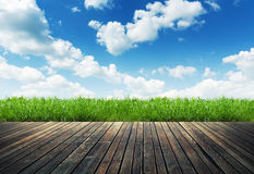 Wood plank on natural green grass Royalty Free Stock Images
