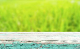 Wood plank over green grass bokeh background Royalty Free Stock Images