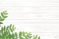 Wood plank pattern and texture with green leaves for natural background. Abstract background for product presentation. Realistic vector illustration Stock Illustration