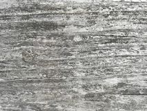 Wood plank texture for background. stock images