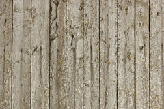 Wood plank texture backgrounda. Wood plank gray texture background Royalty Free Stock Photo