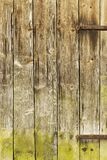 Wood, Plank, Wall, Grass stock image