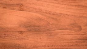 Wood plank wall texture background. Blank for design. stock photo