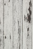 Wood plank wall with white color peeling off Royalty Free Stock Photo