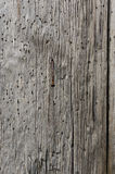 Wood Plank Stock Images