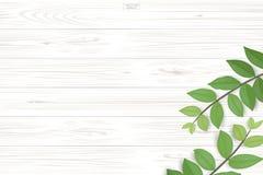 Wood plankamodell och textur med gräsplansidor för naturlig bakgrund vektor illustrationer