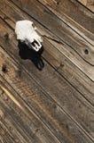 Wood plankasiding för tappning Royaltyfri Foto