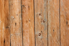 Wood plankatextur Royaltyfri Fotografi