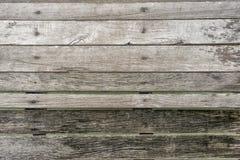 Wood plankatextur, träpirbakgrund, trätapet Royaltyfri Fotografi