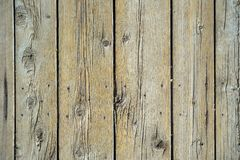Wood Planks Backdrop Stock Photography