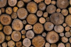 Wood planks end. Photo Of the wood planks end royalty free stock image