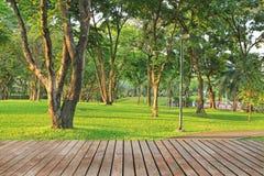 Wood Planks Floor And Green Garden Stock Photo