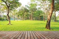 Wood planks floor and green garden Stock Photography