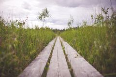 Wood Planks in Grass Under a Cloudy Sky Royalty Free Stock Photo