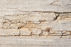 Wood planks, texture with natural pattern Stock Images