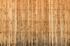 Wood planks texture Stock Images