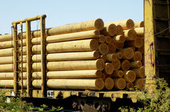 Wood Poles 1. Wood poles in transit from the mill by rail Stock Photos