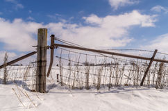 Wood post in countryside. The wooden post and fenceline in the rural snow covered countryside Royalty Free Stock Images