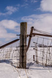 Wood post in countryside. The wooden post and fenceline in the rural snow covered countryside Stock Photo