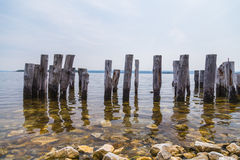 Wood Posts in the Water Royalty Free Stock Image