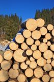 Wood preparation Stock Image
