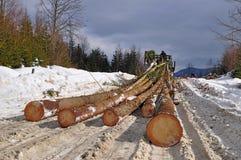 Wood preparation Royalty Free Stock Photo