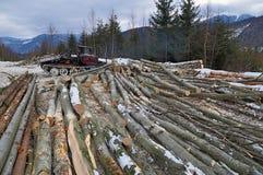 Wood preparation Royalty Free Stock Photos