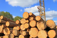 Wood preparation Stock Photo