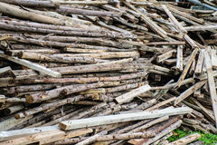 Wood preparation Royalty Free Stock Image